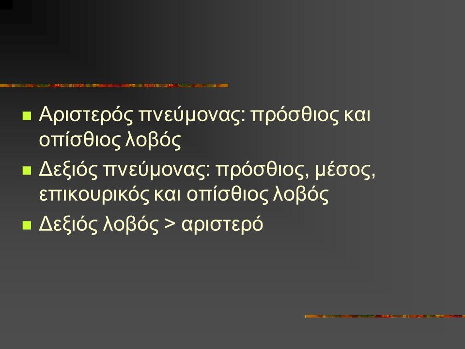 Αριστερός πνεύμονας: πρόσθιος και οπίσθιος λοβός Δεξιός πνεύμονας: πρόσθιος, μέσος, επικουρικός και οπίσθιος λοβός Δεξιός λοβός > αριστερό