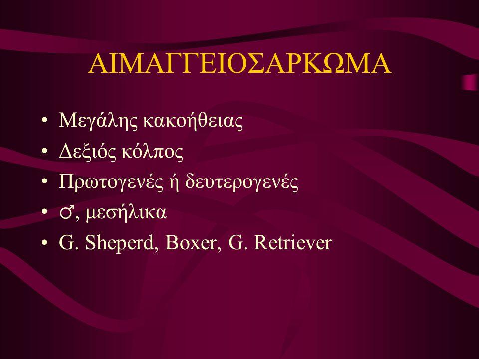 ΑΙΜΑΓΓΕΙΟΣΑΡΚΩΜΑ Μεγάλης κακοήθειας Δεξιός κόλπος Πρωτογενές ή δευτερογενές ♂, μεσήλικα G. Sheperd, Boxer, G. Retriever