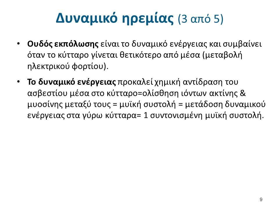 Δυναμικό ηρεμίας (4 από 5) Επαναπόλωση = επιστροφή του κυττάρου στην κατάσταση ηρεμίας.