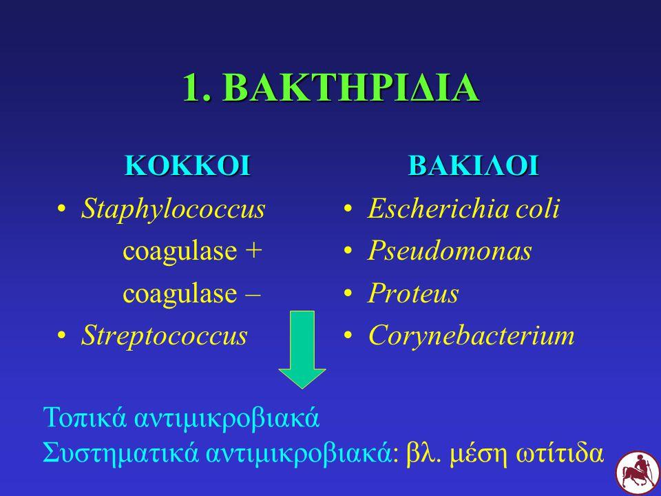 1. ΒΑΚΤΗΡΙΔΙΑ ΚΟΚΚΟΙ Staphylococcus coagulase + coagulase – StreptococcusΒΑΚΙΛΟΙ Escherichia coli Pseudomonas Proteus Corynebacterium Τοπικά αντιμικρο