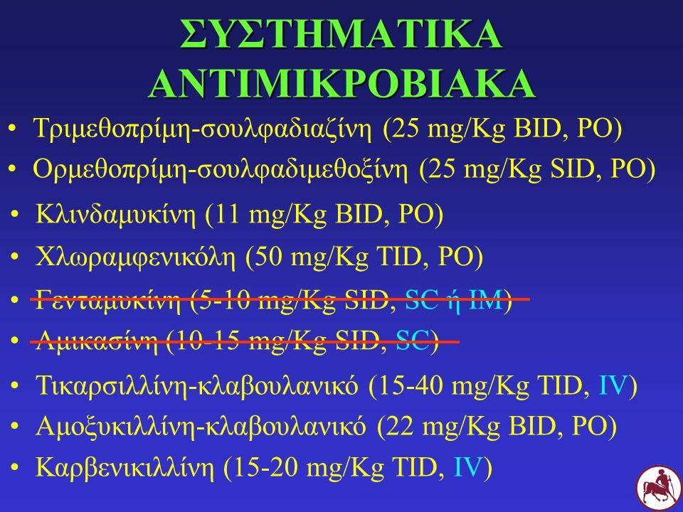 ΣΥΣΤΗΜΑΤΙΚΑ ΑΝΤΙΜΙΚΡΟΒΙΑΚΑ Τριμεθοπρίμη-σουλφαδιαζίνη (25 mg/Kg BID, PO) Ορμεθοπρίμη-σουλφαδιμεθοξίνη (25 mg/Kg SID, PO) Κλινδαμυκίνη (11 mg/Kg BID, P