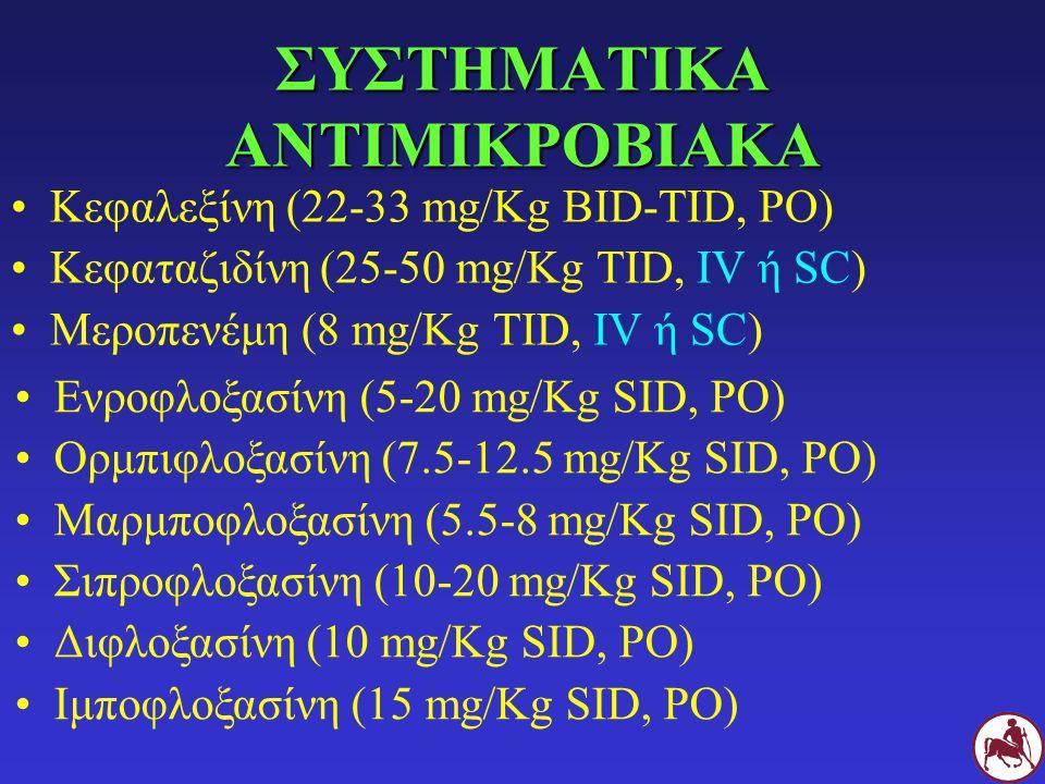 ΣΥΣΤΗΜΑΤΙΚΑ ΑΝΤΙΜΙΚΡΟΒΙΑΚΑ Κεφαλεξίνη (22-33 mg/Kg BID-TID, PO) Κεφαταζιδίνη (25-50 mg/Kg TID, IV ή SC) Μεροπενέμη (8 mg/Kg TID, IV ή SC) Ενροφλοξασίν
