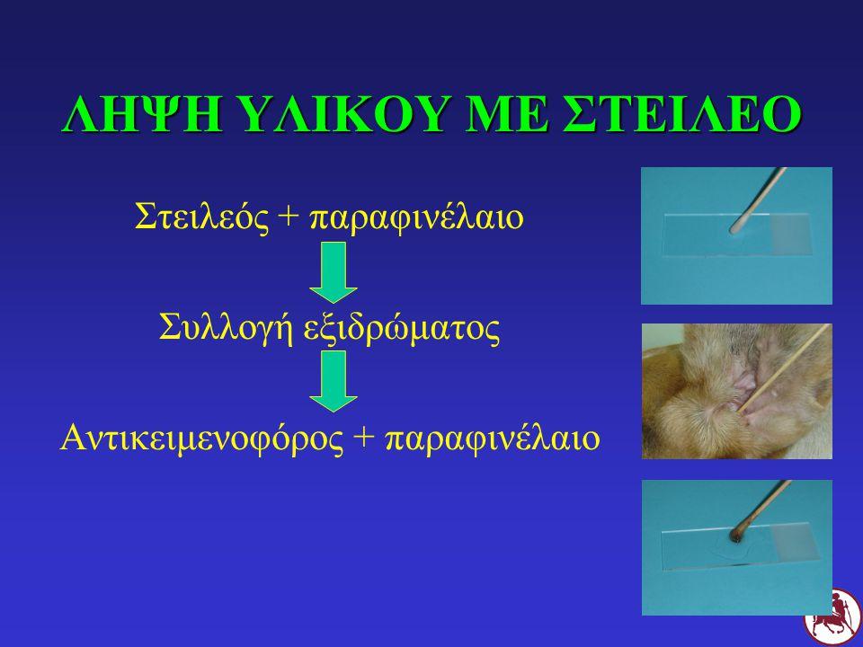 ΛΗΨΗ ΥΛΙΚΟΥ ΜΕ ΣΤΕΙΛΕΟ Στειλεός + παραφινέλαιο Συλλογή εξιδρώματος Αντικειμενοφόρος + παραφινέλαιο