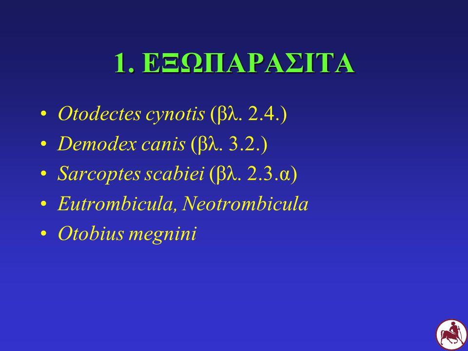 1. ΕΞΩΠΑΡΑΣΙΤΑ Otodectes cynotis (βλ. 2.4.) Demodex canis (βλ. 3.2.) Sarcoptes scabiei (βλ. 2.3.α) Eutrombicula, Neotrombicula Otobius megnini