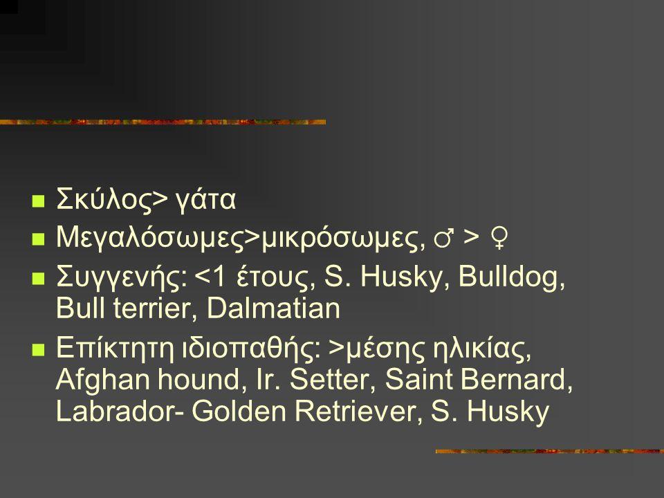 Σκύλος> γάτα Μεγαλόσωμες>μικρόσωμες, ♂ > ♀ Συγγενής: <1 έτους, S. Husky, Bulldog, Bull terrier, Dalmatian Επίκτητη ιδιοπαθής: >μέσης ηλικίας, Afghan h