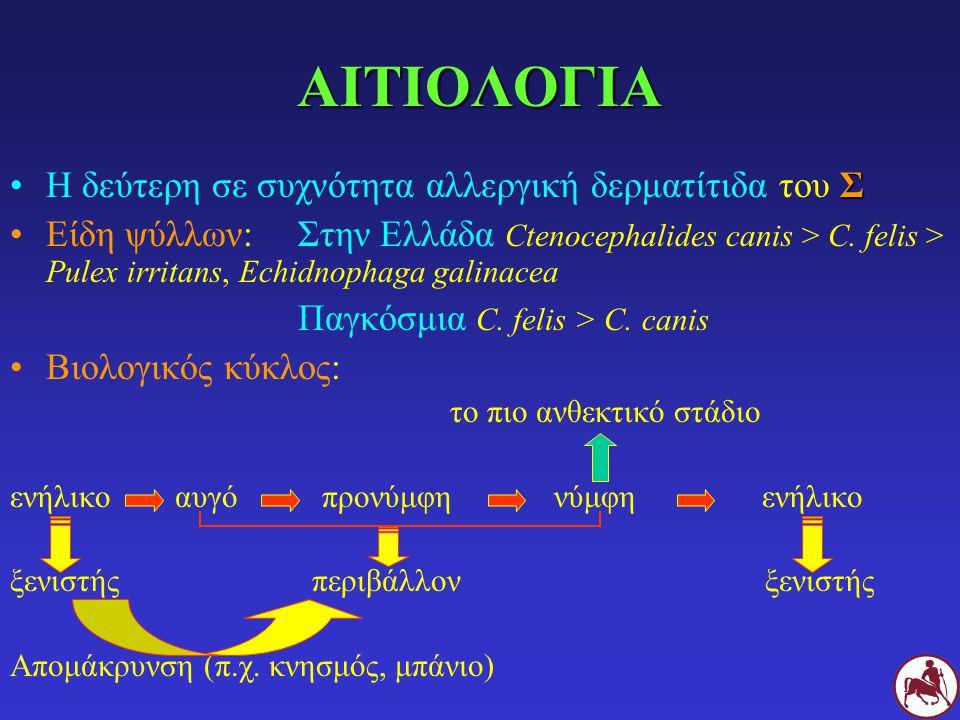 ΠΑΘΟΓΕΝΕΙΑ Ψύλλοι αναιμία μετάδοση λοιμωδών-παρασιτικών νόσων (Dipylidium caninum, Dipetalonema recondidum κλπ) ερεθιστική δερματίτιδα από νύγματα Α.Ψ.Δ.αλλεργιογόνα στο σάλιο Διαλείπουσα έκθεση, ατοπία Τύπου Ι καθυστερημένου δερματική βασιφιλική τύπου IV τύπου αντίδραση υπερευαισθησία