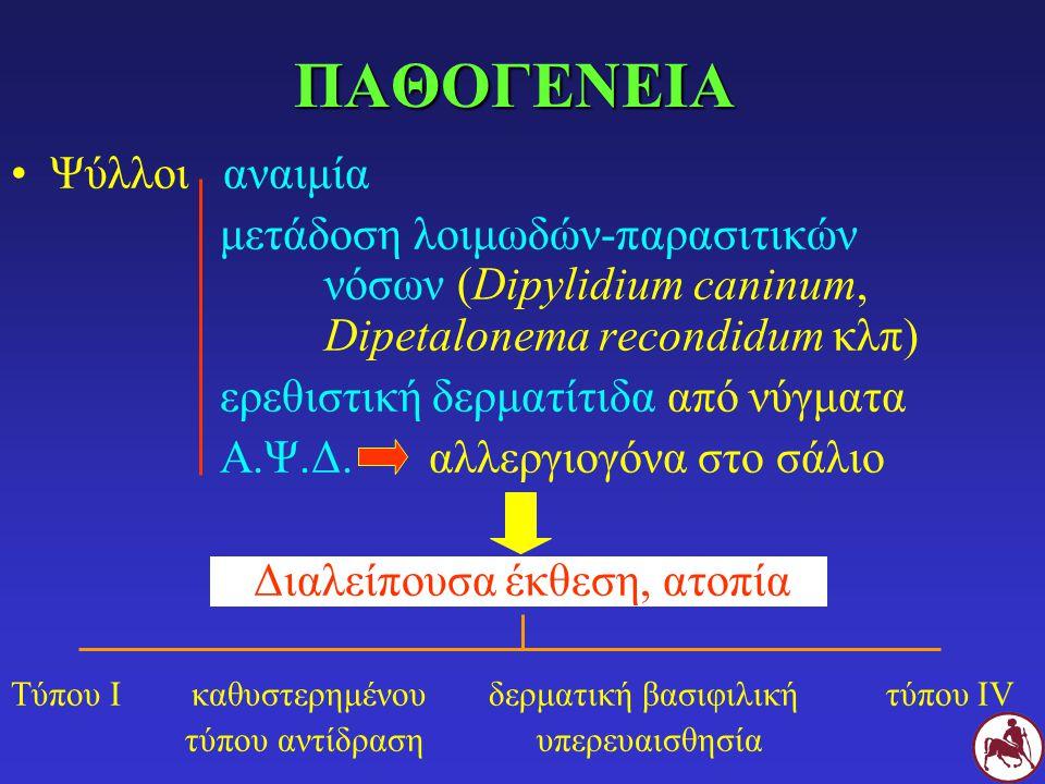 ΚΛΙΝΙΚΗ ΕΙΚΟΝΑ Ανεξάρτητα φύλου, φυλής, ηλικίας (πιο συχνά σε νεαρά-ενήλικα) Εποχικότητα θερμοί-υγροί μήνες (Αύγουστος-Οκτώβριος) Σ όλο το χρόνο για Σ που ζουν στο σπίτι Κνησμός αλωπεκία-υποτρίχωση, δρυφάδες, hot-spot οζίδια (ινοκνησμώδη) Πρωτογενείς αλλοιώσεις: βλατίδες-ερύθημα Εντόπιση: οπίσθια μοίρα σώματος