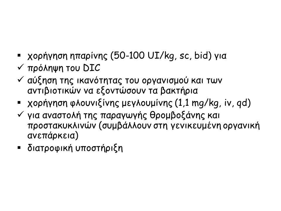  χορήγηση ηπαρίνης (50-100 UI/kg, sc, bid) για πρόληψη του DIC αύξηση της ικανότητας του οργανισμού και των αντιβιοτικών να εξοντώσουν τα βακτήρια 