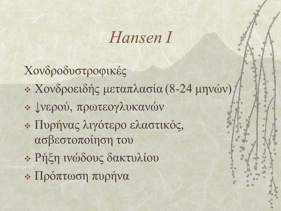 Hansen I Χονδροδυστροφικές  Χονδροειδής μεταπλασία (8-24 μηνών)  ↓νερού, πρωτεογλυκανών  Πυρήνας λιγότερο ελαστικός, ασβεστοποίηση του  Ρήξη ινώδο