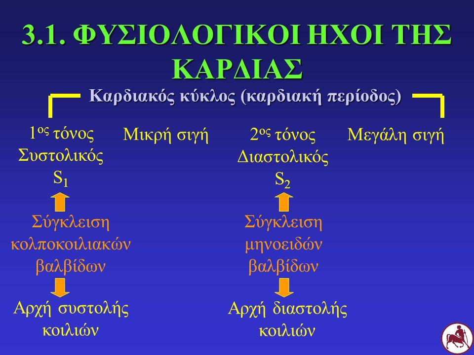 Σχηματική παράσταση των κοιλοτήτων και των βαλβίδων της καρδιάς και των μεγάλων αγγείων Δ Α Μεσοκολπικό διάφραγμα Μεσοκοιλιακό διάφραγμα Μιτροειδής βαλβίδα Τριγλώχινη βαλβίδα Μηνοειδής βαλβίδα αορτής Μηνοειδής βαλβίδα πνευμονικής αρτηρίας