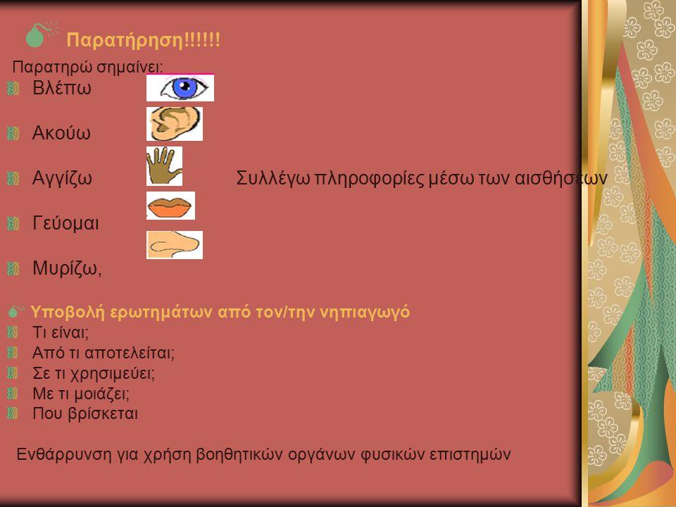  Παρατήρηση!!!!!! Παρατηρώ σημαίνει: Βλέπω Ακούω Αγγίζω Συλλέγω πληροφορίες μέσω των αισθήσεων Γεύομαι Μυρίζω,  Υποβολή ερωτημάτων από τον/την νηπια
