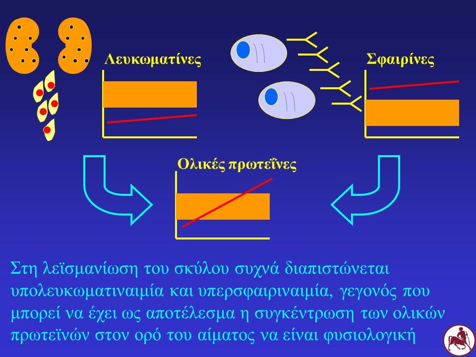 Στη λεϊσμανίωση του σκύλου συχνά διαπιστώνεται υπολευκωματιναιμία και υπερσφαιριναιμία, γεγονός που μπορεί να έχει ως αποτέλεσμα η συγκέντρωση των ολικών πρωτεϊνών στον ορό του αίματος να είναι φυσιολογική Λευκωματίνες Σφαιρίνες Ολικές πρωτεΐνες