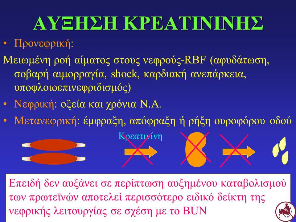 ΑΥΞΗΣΗ ΚΡΕΑΤΙΝΙΝΗΣ Προνεφρική: Μειωμένη ροή αίματος στους νεφρούς-RBF (αφυδάτωση, σοβαρή αιμορραγία, shock, καρδιακή ανεπάρκεια, υποφλοιοεπινεφριδισμός) Νεφρική: οξεία και χρόνια Ν.Α.