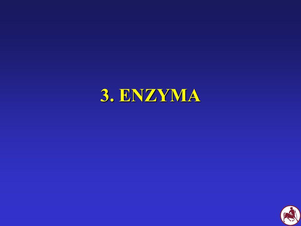 3. ΕΝΖΥΜΑ