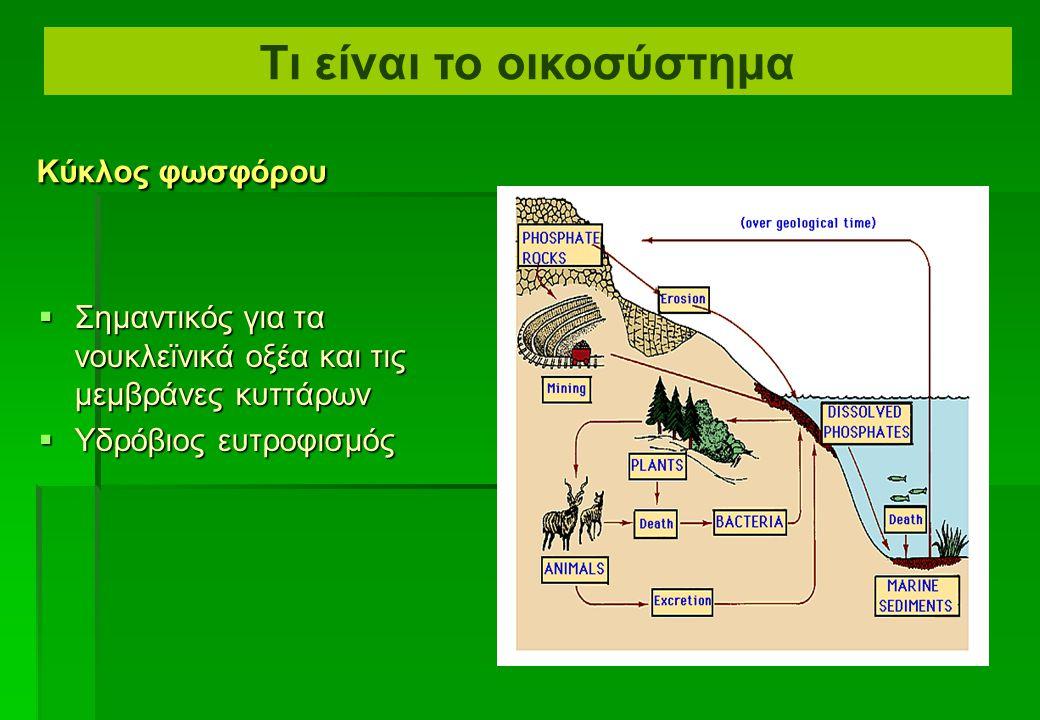  Η παγκόσμια αύξηση της θερμοκρασίας λόγω του φαινομένου του θερμοκηπίου είναι μια διαφορετική διαδικασία  Η εισαγωγή ορισμένων αερίων στην ατμόσφαιρα  Και ειδικότερα CH 4 Παγκόσμια αύξηση της θερμοκρασίας λόγω του φαινομένου του θερμοκηπίου Τι είναι το οικοσύστημα