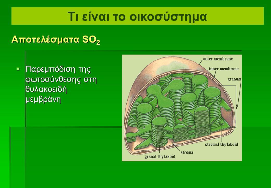  Παρέμβαση στο άνοιγμα των στομάτων Αποτελέσματα SO 2 Τι είναι το οικοσύστημα