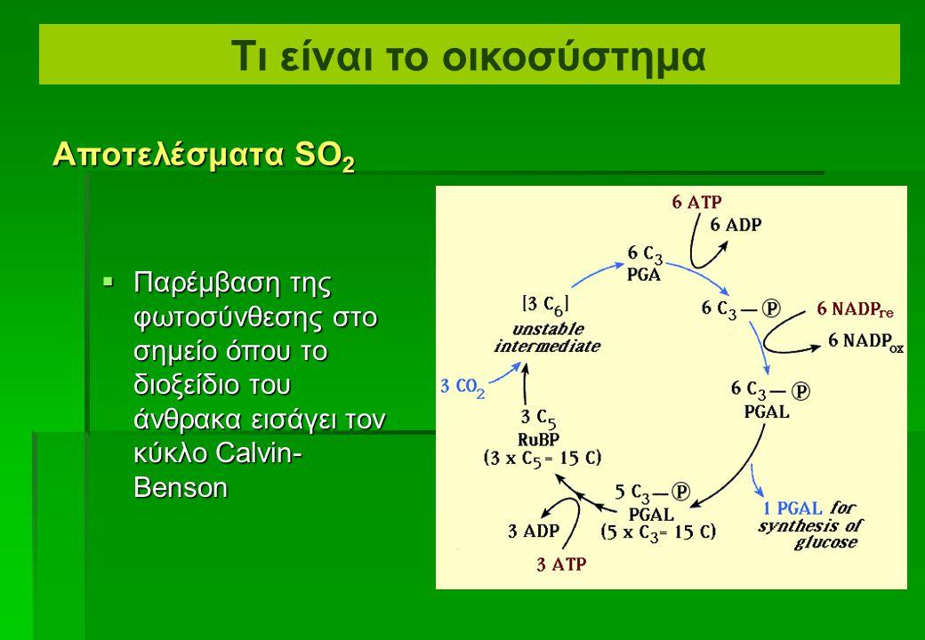  Παρεμπόδιση της φωτοσύνθεσης στη θυλακοειδή μεμβράνη Αποτελέσματα SO 2 Τι είναι το οικοσύστημα