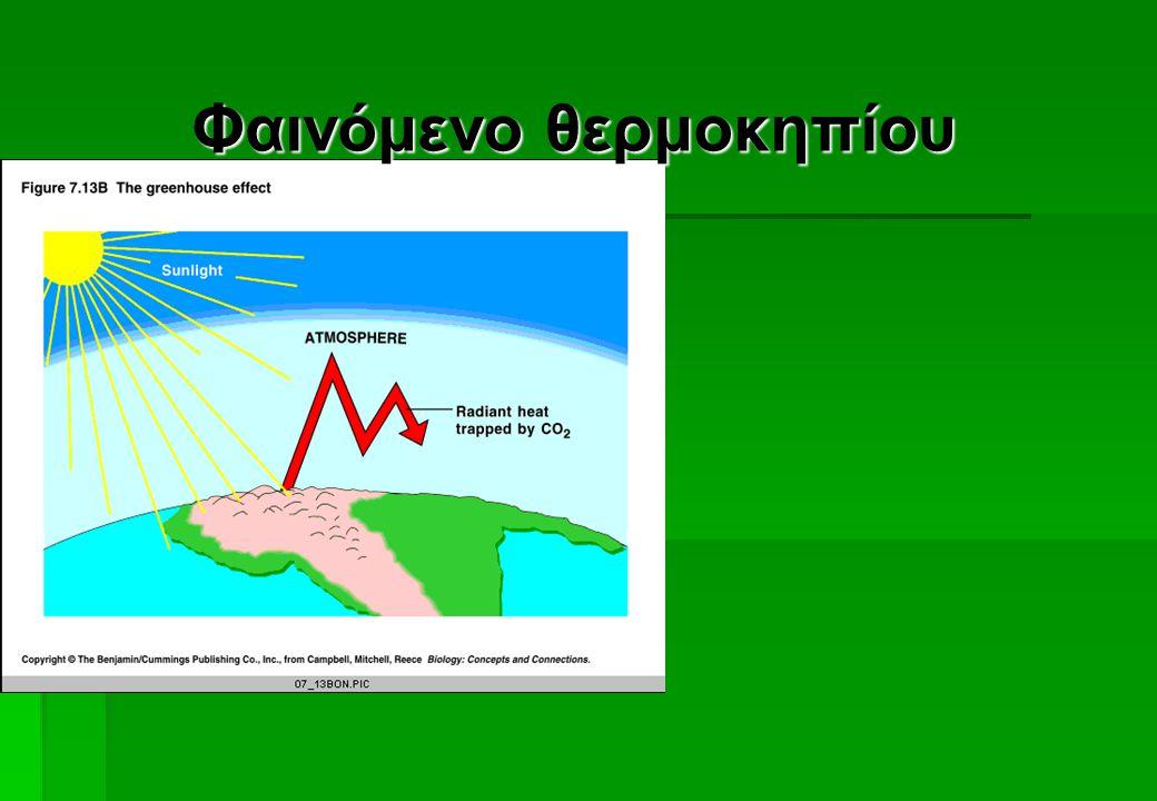  Φαινόμενο θερμοκηπίου  Αυξάνεται η πρωτογενής παραγωγικότητα  Αλλάζει η δομή των οικολογικών περιοχών Μονοξείδιο του άνθρακα, διοξείδιο του άνθρακ
