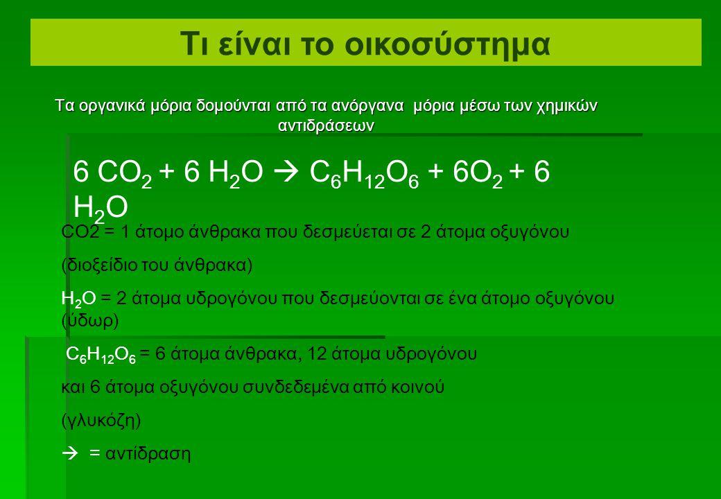  Τα οργανικά μόρια περιέχουν δεσμούς άνθρακας- άνθρακα ή άνθρακας-υδρογόνου Οργανικά και ανόργανα μόρια Παράδειγμα: C 6 H 12 O 6 (γλυκόζη) Διαφορετικά τα μόρια είναι ανόργανα Παράδειγμα: CO2 (διοξείδιο άνθρακα) Παράδειγμα: H 2 O (ύδωρ) Τι είναι το οικοσύστημα