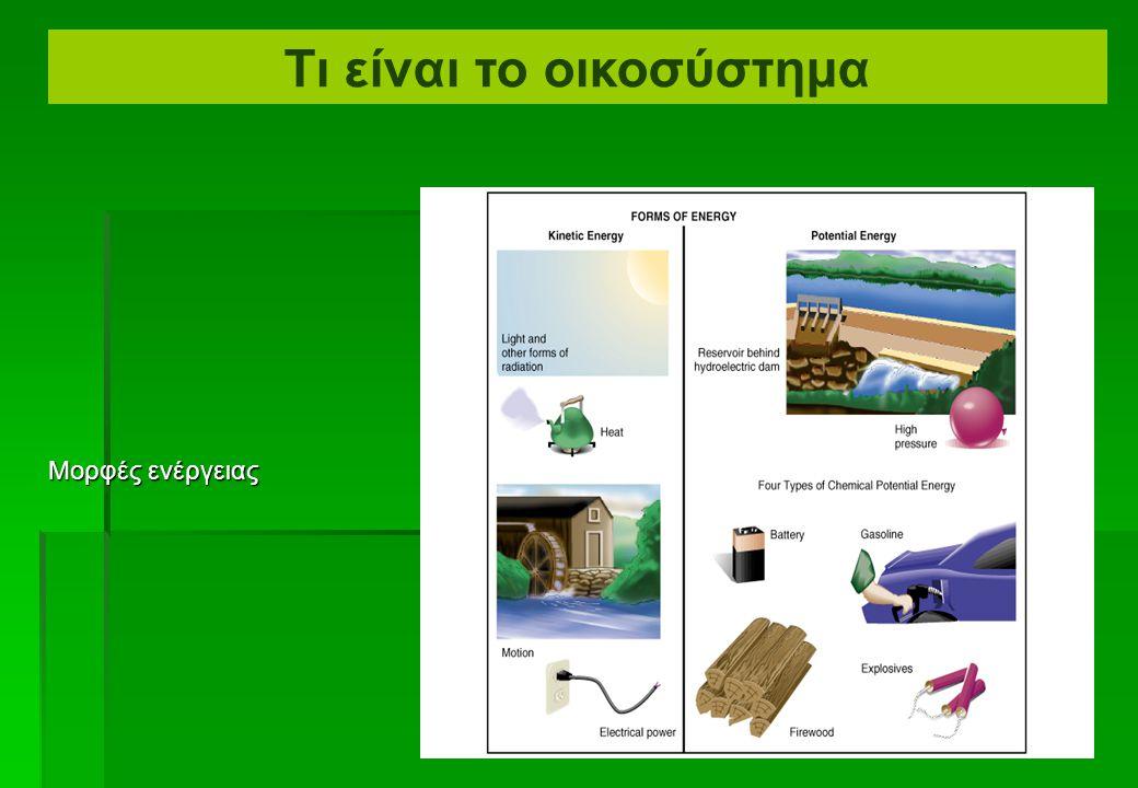  Ενέργεια = η δυνατότητα να κινηθεί η ύλη  Κινητική ενέργεια = ενέργεια στη δράση ή κίνηση (φως, θερμότητα, φυσική κίνηση)  Δυναμική ενέργεια = απο