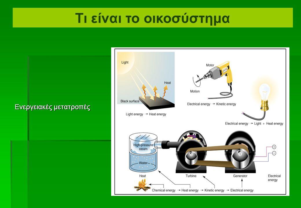 Μορφές ενέργειας Τι είναι το οικοσύστημα