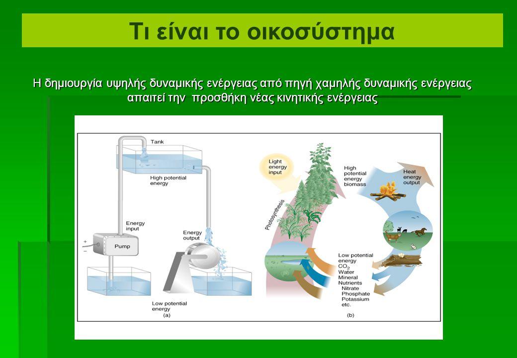 Δόμηση οργανικών μορίων και οικοσυστημάτων (α) Για να λειτουργήσουν οι οργανισμοί και τα οικοσυστήματα, πρέπει να έχουν την διαθέσιμη δυναμική ενέργεια.
