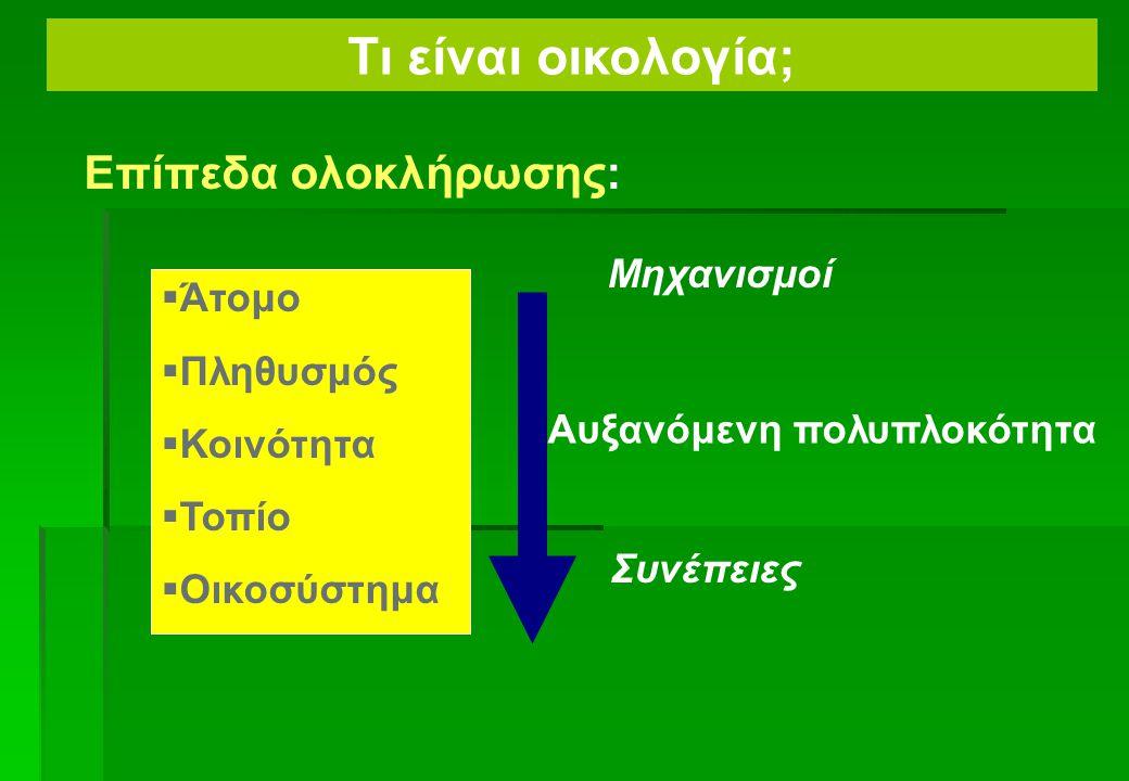  Θερμική ενέργεια  Μηχανική ενέργεια (+ ενέργεια βαρύτητας, κ.λπ....)  Χημική ενέργεια = ενέργεια που αποθηκεύεται μέσα σε μοριακούς δεσμούς Τύποι ενέργειας Τι είναι το οικοσύστημα