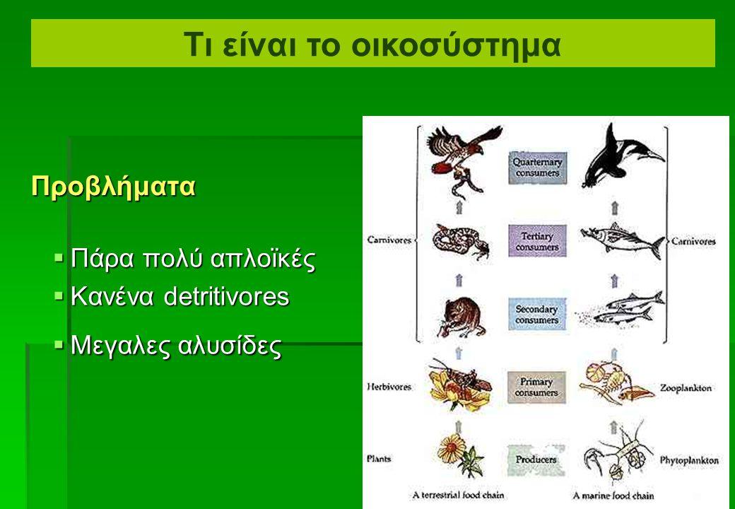 Τροφικές αλυσίδες Τι είναι το οικοσύστημα