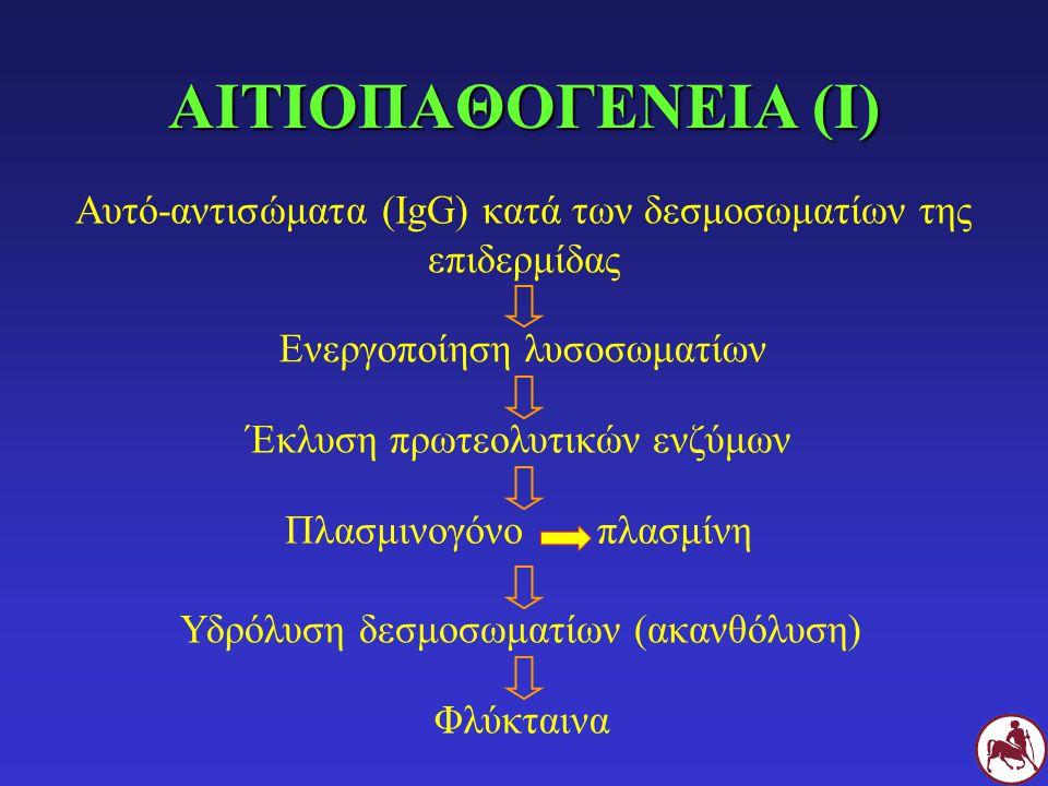 ΑΙΤΙΟΠΑΘΟΓΕΝΕΙΑ (Ι) Αυτό-αντισώματα (IgG) κατά των δεσμοσωματίων της επιδερμίδας Ενεργοποίηση λυσοσωματίων Έκλυση πρωτεολυτικών ενζύμων Πλασμινογόνο πλασμίνη Υδρόλυση δεσμοσωματίων (ακανθόλυση) Φλύκταινα