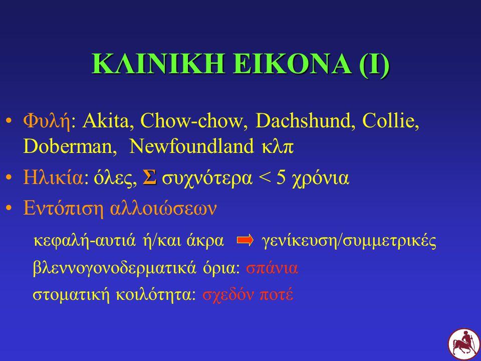 ΚΛΙΝΙΚΗ ΕΙΚΟΝΑ (Ι) Φυλή: Akita, Chow-chow, Dachshund, Collie, Doberman, Newfoundland κλπ ΣΗλικία: όλες, Σ συχνότερα < 5 χρόνια Εντόπιση αλλοιώσεων κεφ
