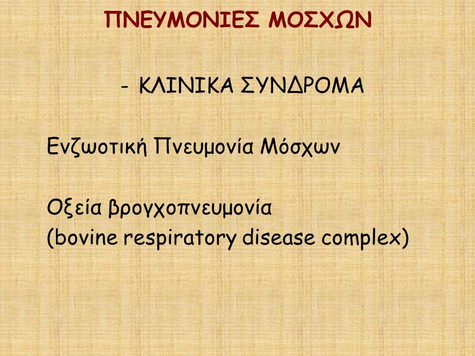 ΠΝΕΥΜΟΝΙΕΣ ΜΟΣΧΩΝ -ΚΛΙΝΙΚΑ ΣΥΝΔΡΟΜΑ Ενζωοτική Πνευμονία Μόσχων Οξεία βρογχοπνευμονία (bovine respiratory disease complex)