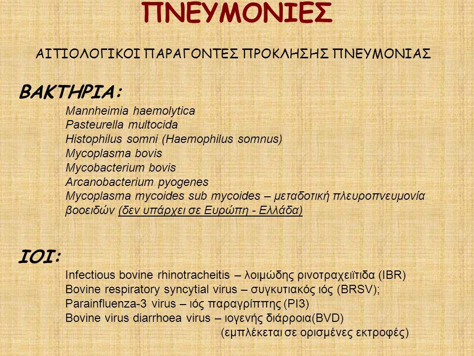 ΠΝΕΥΜΟΝΙΕΣ ΑΙΤΙΟΛΟΓΙΚΟΙ ΠΑΡΑΓΟΝΤΕΣ ΠΡΟΚΛΗΣΗΣ ΠΝΕΥΜΟΝΙΑΣ ΒΑΚΤΗΡΙΑ: Mannheimia haemolytica Pasteurella multocida Histophilus somni (Haemophilus somnus)