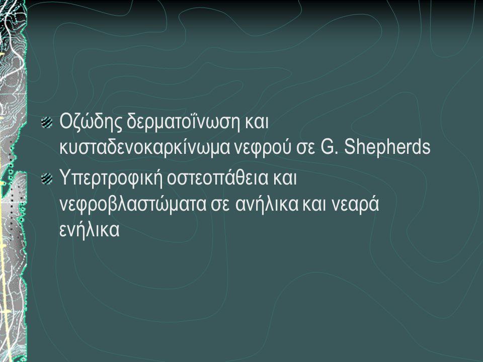 Οζώδης δερματοΐνωση και κυσταδενοκαρκίνωμα νεφρού σε G. Shepherds Υπερτροφική οστεοπάθεια και νεφροβλαστώματα σε ανήλικα και νεαρά ενήλικα