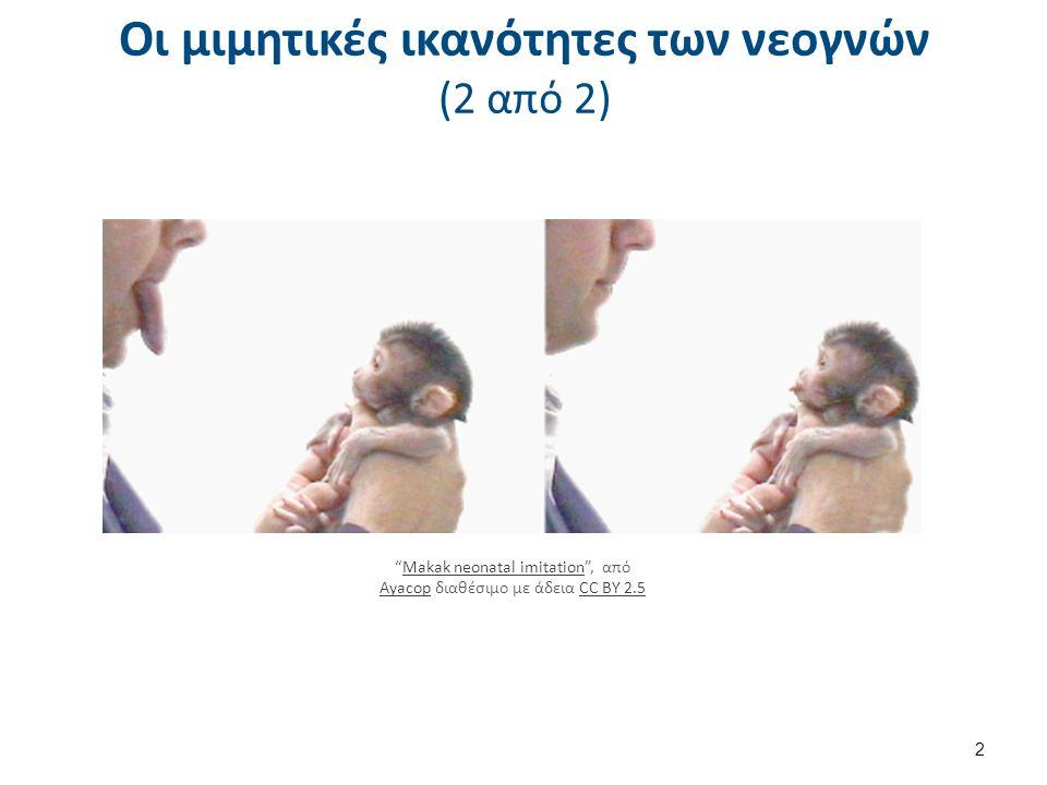 """Οι μιμητικές ικανότητες των νεογνών (2 από 2) 2 """"Makak neonatal imitation"""", απόMakak neonatal imitation AyacopAyacop διαθέσιμο με άδεια CC BY 2.5CC BY"""