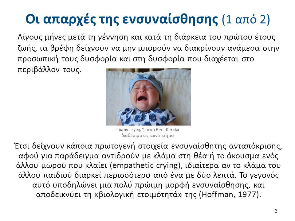 Οι απαρχές της ενσυναίσθησης (1 από 2) Λίγους μήνες μετά τη γέννηση και κατά τη διάρκεια του πρώτου έτους ζωής, τα βρέφη δείχνουν να μην μπορούν να δι