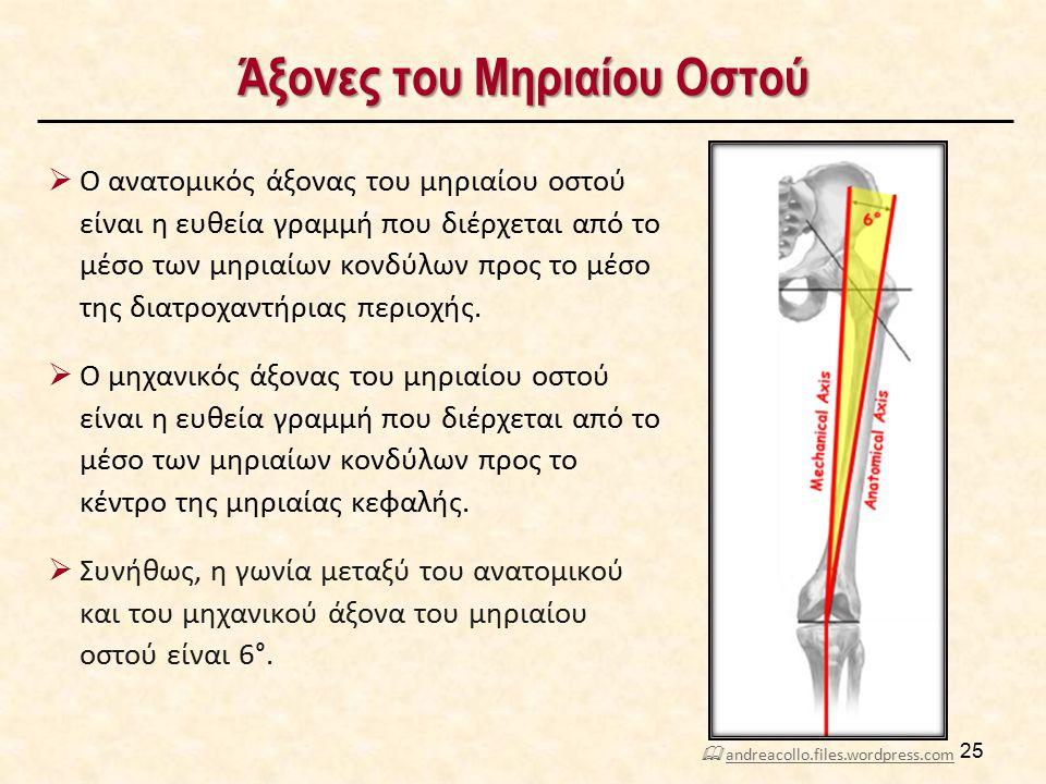 Άξονες του Μηριαίου Οστού  Ο ανατομικός άξονας του μηριαίου οστού είναι η ευθεία γραμμή που διέρχεται από το μέσο των μηριαίων κονδύλων προς το μέσο