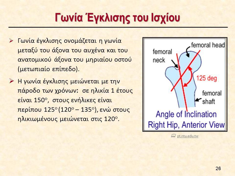 Γωνία Έγκλισης του Ισχίου  Γωνία έγκλισης ονομάζεται η γωνία μεταξύ του άξονα του αυχένα και του ανατομικού άξονα του μηριαίου οστού (μετωπιαίο επίπε