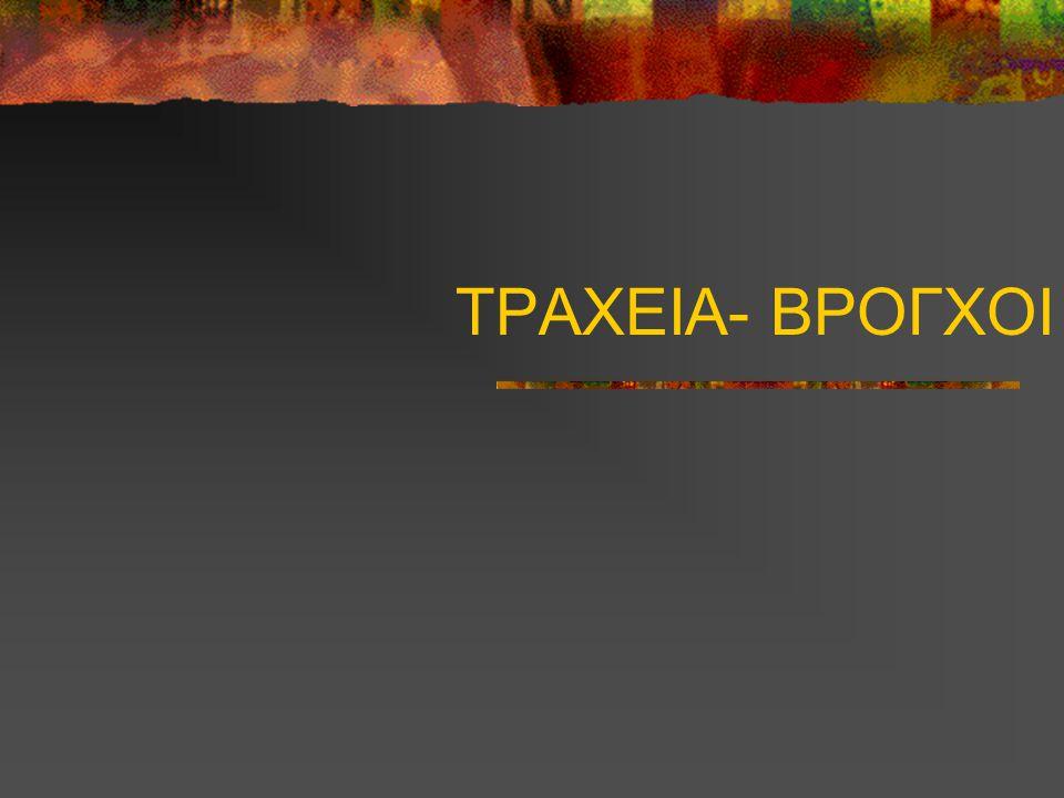 ΤΡΑΧΕΙΑ- ΒΡΟΓΧΟΙ