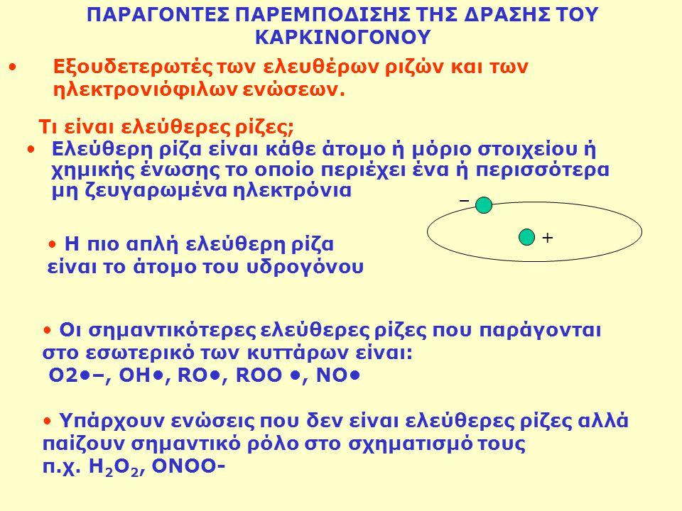 Ελεύθερη ρίζα είναι κάθε άτομο ή μόριο στοιχείου ή χημικής ένωσης το οποίο περιέχει ένα ή περισσότερα μη ζευγαρωμένα ηλεκτρόνια + Οι σημαντικότερες ελ