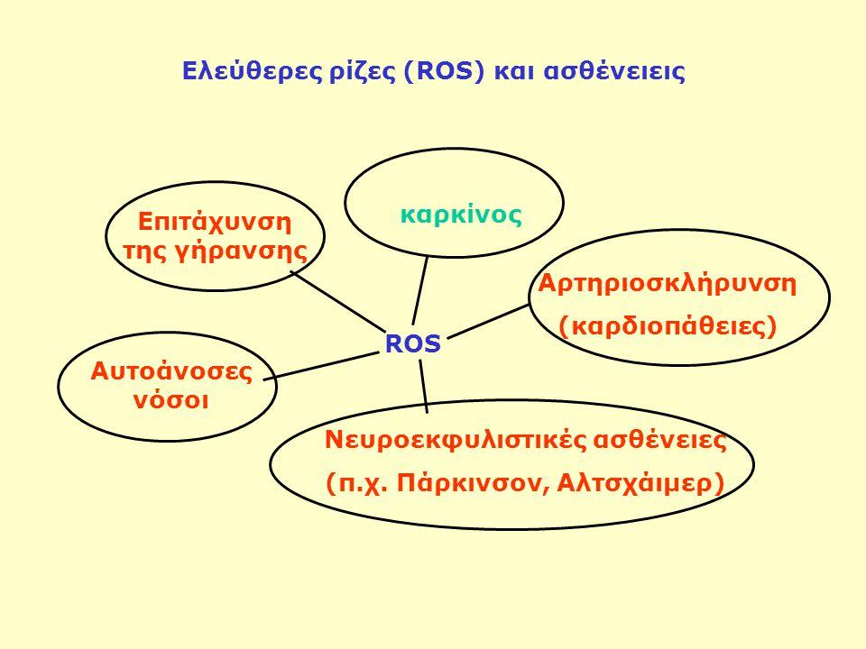 Ελεύθερες ρίζες (ROS) και ασθένειεις ROS καρκίνος Νευροεκφυλιστικές ασθένειες (π.χ. Πάρκινσον, Αλτσχάιμερ) Αυτοάνοσες νόσοι Αρτηριοσκλήρυνση (καρδιοπά