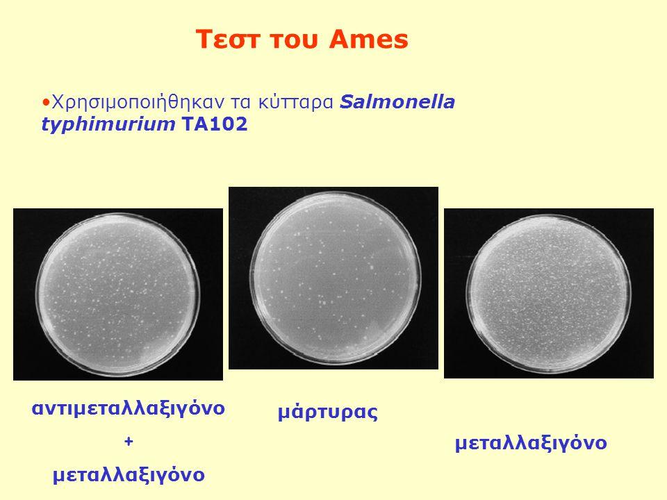 αντιμεταλλαξιγόνο + μεταλλαξιγόνο μάρτυρας Τεστ του Ames Χρησιμοποιήθηκαν τα κύτταρα Salmonella typhimurium TA102