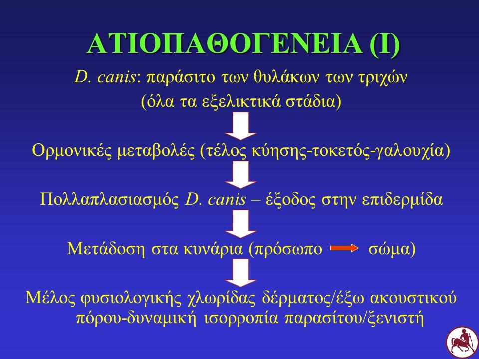 ΑΤΙΟΠΑΘΟΓΕΝΕΙΑ (Ι) D. canis: παράσιτο των θυλάκων των τριχών (όλα τα εξελικτικά στάδια) Ορμονικές μεταβολές (τέλος κύησης-τοκετός-γαλουχία) Πολλαπλασι