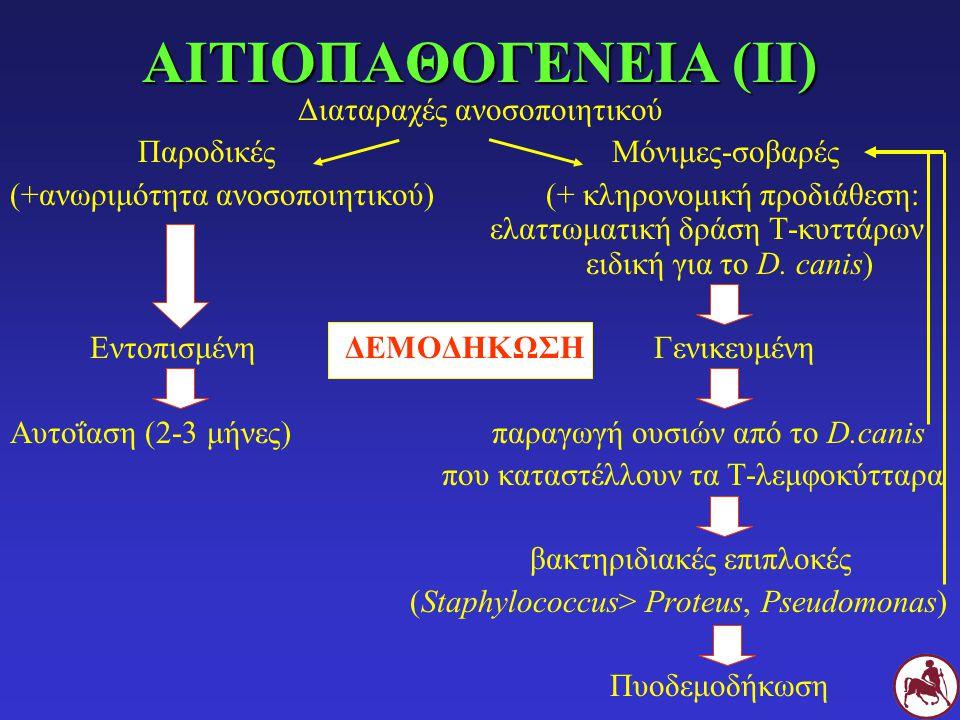 ΚΛΙΝΙΚΗ ΤΑΞΙΝΟΜΗΣΗ Ανάλογα με την έκταση των αλλοιώσεων: εντοπισμένη (< 6 εστίες) γενικευμένη( > 12 εστίες ή μια μεγάλη περιοχή ή ≥ 2 άκρα) Ανάλογα με την παρουσία ή όχι βακτηριδιακών επιπλοκών: απλή επιπλεγμένη (βακτηριδιακή δερματίτιδα: βαθιά > επιπολής) Ανάλογα με την ηλικία εμφάνισης: των νεαρών: < 18 μηνών (12 μηνών, 4 χρόνων) των ενηλίκων: > 18 μηνών (4 χρόνων)