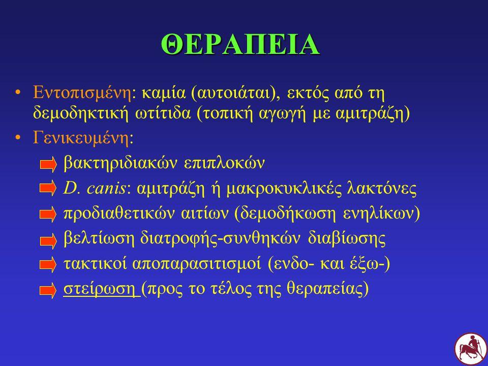 ΘΕΡΑΠΕΙΑ Εντοπισμένη: καμία (αυτοιάται), εκτός από τη δεμοδηκτική ωτίτιδα (τοπική αγωγή με αμιτράζη) Γενικευμένη: βακτηριδιακών επιπλοκών D. canis: αμ
