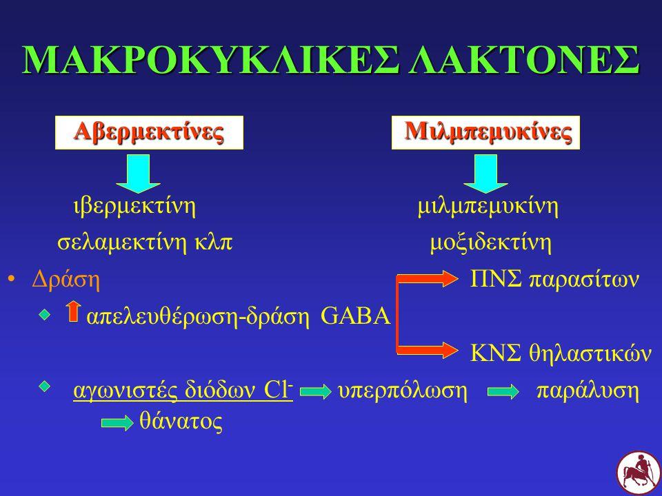 ΜΑΚΡΟΚΥΚΛΙΚΕΣ ΛΑΚΤΟΝΕΣ ΑβερμεκτίνεςΜιλμπεμυκίνες ιβερμεκτίνη μιλμπεμυκίνη σελαμεκτίνη κλπ μοξιδεκτίνη Δράση ΠΝΣ παρασίτων απελευθέρωση-δράση GABA ΚΝΣ
