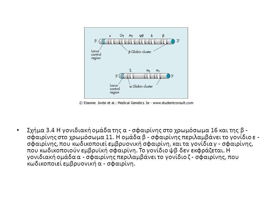 Οι διαταραχές της αιμοσφαιρίνης, οι μεταλλαγές που τις προκαλούν, και τα σημαντικότερα χαρακτηριστικά τους γνωρίσματα συνοψίζονται στον Πίνακα 3-1.Πίνακα 3-1 Πινάκας 3-1.
