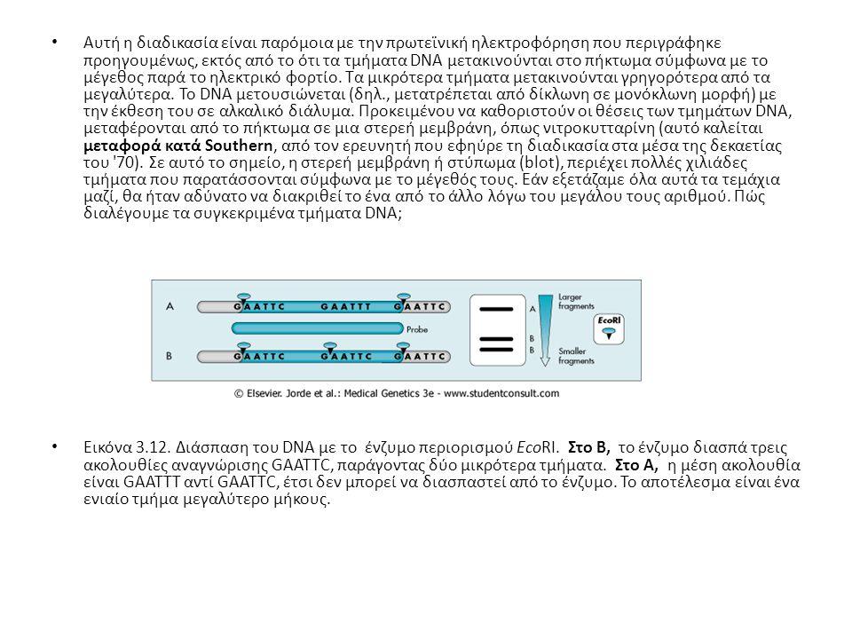 Εδώ, είναι δυνατό να χρησιμοποιηθεί ο κανόνας της συμπληρωματικότητας των βάσεων του DNA.