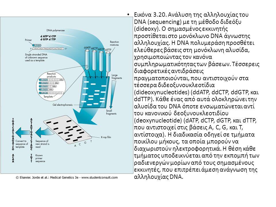 Έγχρωμη Εικόνα 1.Αυτοματοποιημένη ανάλυση της αλληλουχίας του DNA.