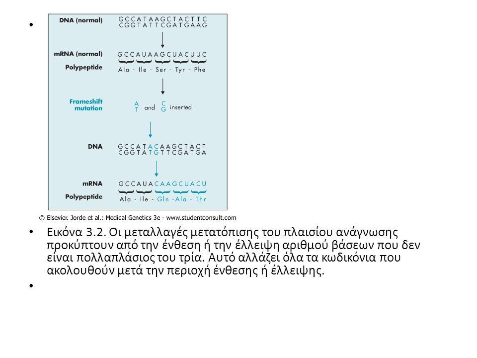 Σε μεγαλύτερη κλίμακα, διπλασιασμοί ολόκληρων γονιδίων μπορούν να οδηγήσουν επίσης σε γενετική ασθένεια, όπως στην ασθένεια Charcot-Marie-Tooth.
