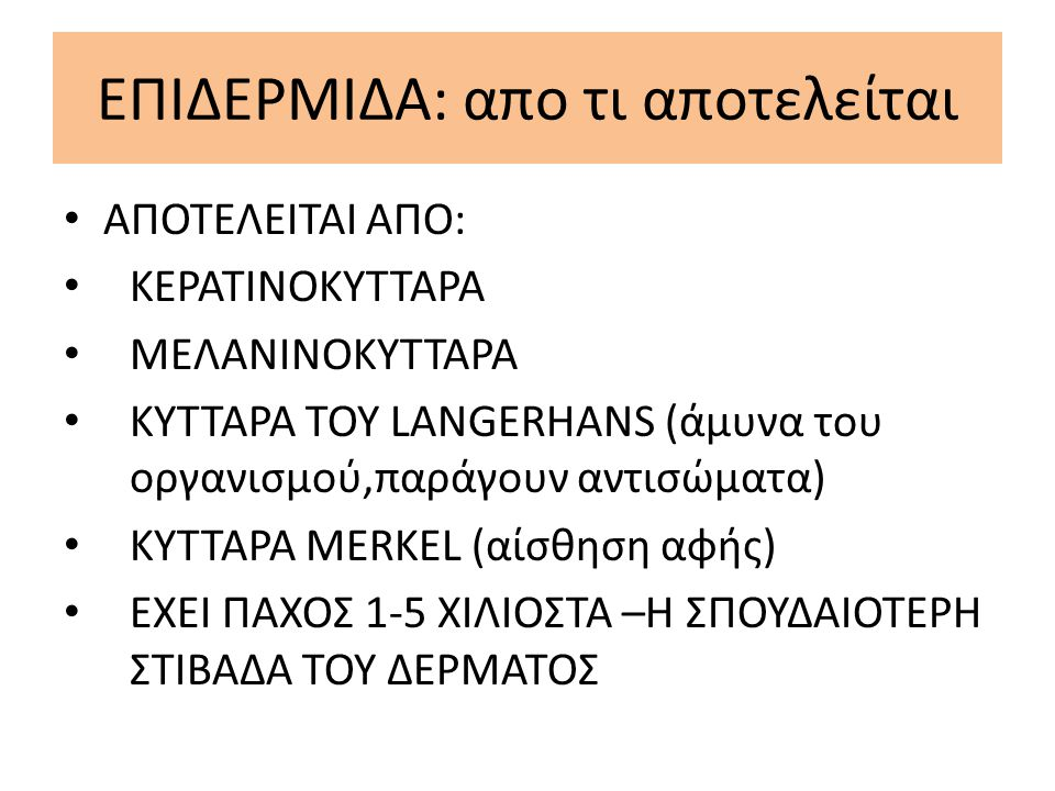 ΕΠΙΔΕΡΜΙΔΑ: απο τι αποτελείται ΑΠΟΤΕΛΕΙΤΑΙ ΑΠΟ: ΚΕΡΑΤΙΝΟΚΥΤΤΑΡΑ ΜΕΛΑΝΙΝΟΚΥΤΤΑΡΑ ΚΥΤΤΑΡΑ ΤΟΥ LANGERHANS (άμυνα του οργανισμού,παράγουν αντισώματα) ΚΥΤΤ